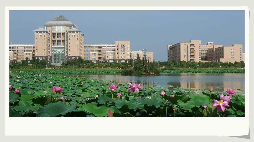 武汉科技大学自考专升本招生简章