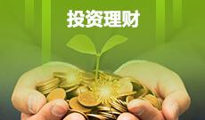 中南财经政法大学自考投资学本科(020304)专业介绍及课程设置