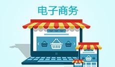 武汉纺织大学自考电子商务本科(120801)专业介绍及课程设置