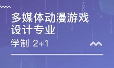 武汉工程大学自考动漫设计专科(150120)专业介绍及课程设置