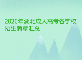 <b>2020年湖北成人高考各学校招生简章汇总(更新中)</b>