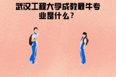 武汉工程大学成教最牛专业是什么?