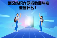 武汉纺织大学成教最牛专业是什么?