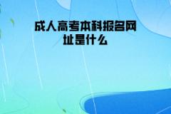 武汉工程大学成人高考本科报名网址是什么