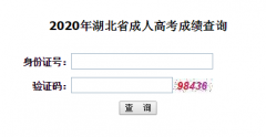 2020年华中科技大学成人高考成绩查询时间及入口