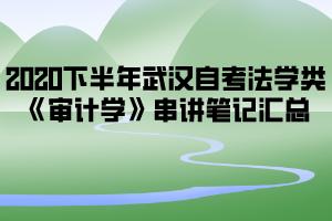 2020下半年武汉自考法学类《审计学》串讲笔记汇总