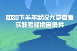 2020下半年武汉大学自考实践考核报名条件