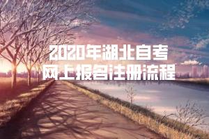 2020年湖北自考网上报名注册流程