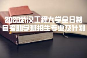2020武汉工程大学全日制自考助学班招生专业及计划