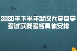 2020年下半年武汉大学自学考试实践考核具体安排