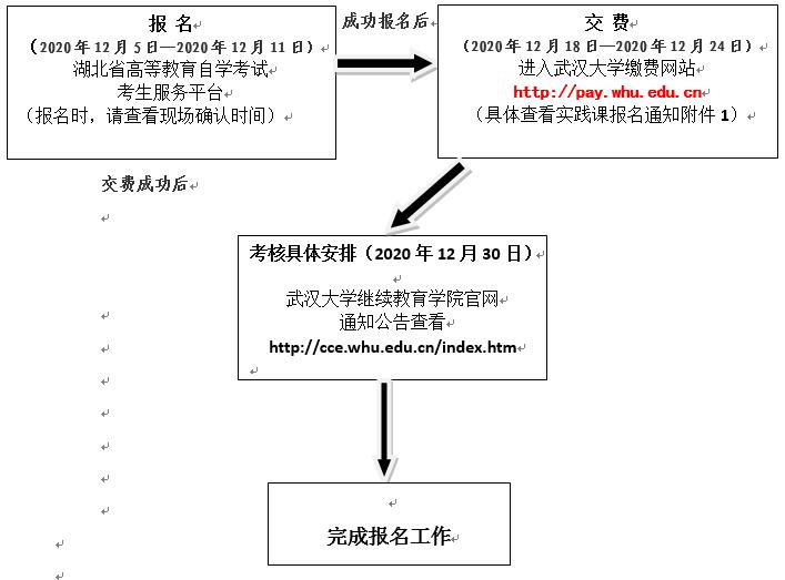 武汉大学自考专业实践考核流程