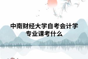 中南财经大学自考会计学专业课考什么