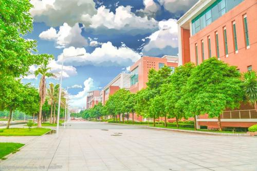 湖北雄楚大道杨家湾自考服务中心新地址在哪里?