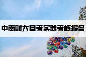 中南财大自考实践考核报名
