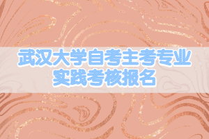 武汉大学自考主考专业实践考核报名