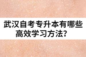武汉自考专升本有哪些高效学习方法?