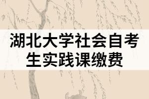 湖北大学社会自考生实践课缴费