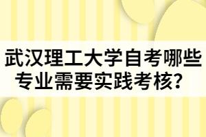 武汉理工大学自考哪些专业需要实践考核?