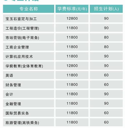 武汉工程科技学院招生专业