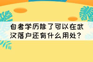 自考学历除了可以在武汉落户还有什么用处?