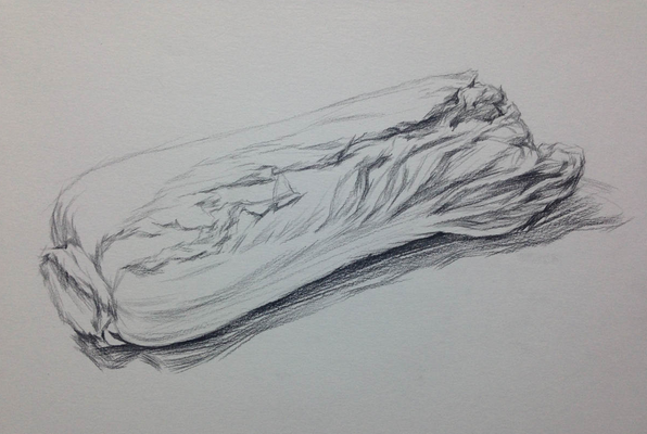 年湖北美术高考单个物体白菜的素描绘画步骤图片