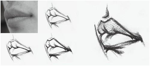 2016年湖北美术高考人物速写中嘴巴的表现方法图片