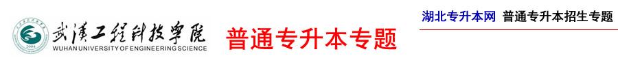 武汉工程科技学院专升本