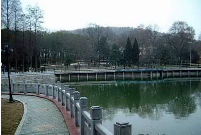 湖光风景_ 武汉航海 职业 技术学院