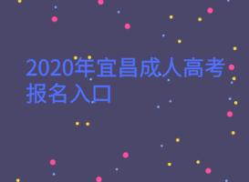 <b>2020年宜昌成人高考报名入口</b>