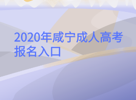 <b>2020年咸宁成人高考报名入口</b>
