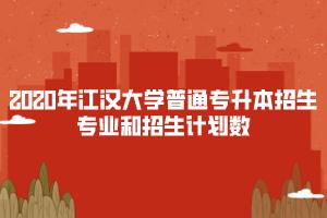 江汉大学普通专升本招生专业