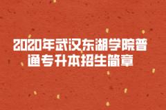 2020年武汉东湖学院普通专升本招生简章