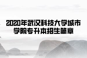 2020年武汉科技大学城市学院专升本招生简章