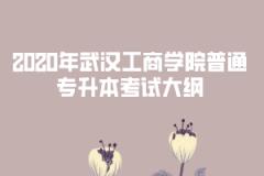 2020年武汉工商学院普通专升本考试大纲汇总