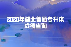 2020年武汉生物工程学院普通专升本考试成绩查询
