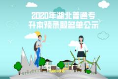 2020年武汉东湖学院普通专升本预录取考生名单公示