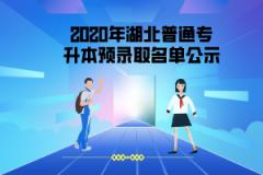 2020年文华学院普通专升本第一批拟录取名单公示