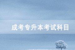 2020年武汉成人高考专升本考试科目有哪些?