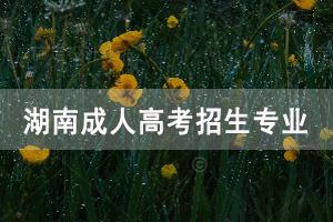 湖南大学成人高考招生专业有哪些?