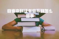 武汉工程大学自考本科证书查不到怎么回事