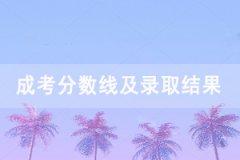 2020年武汉科技大学成人高考录取分数线及录取结果