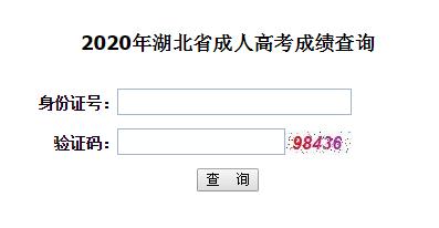 2020年华中科技大学成人高考成绩查询入口