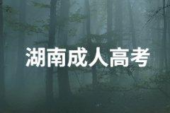 社会人士报考湖南成考选择那种学习方式比较好?