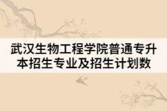 2021年武汉生物工程学院普通专升本招生专业及招生计划数