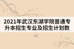 2021年武汉东湖学院普通专升本招生专业及招生计划数