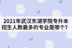 2021年武汉东湖学院专升本招生人数最多的专业是哪个?