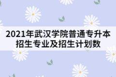 2021年武汉学院普通专升本招生专业及招生计划数