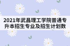 2021年武昌理工学院普通专升本招生专业及招生计划数