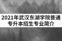 2021年武汉东湖学院普通专升本招生专业简介