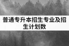2021年武汉工程大学邮电与信息工程学院普通专升本招生专业和招